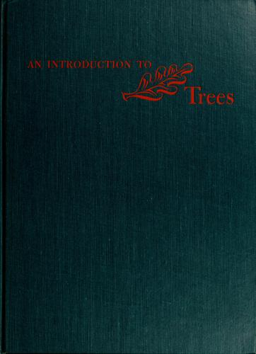 An introduction to trees.